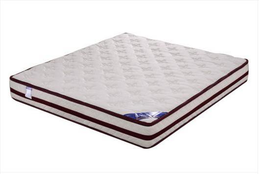 共枕1.2米床垫  可拆洗针织布海绵床垫